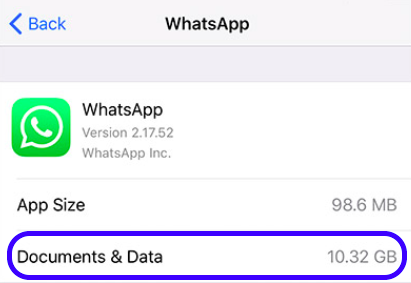 The big cached or downloaded files on iPhone WhatsApp